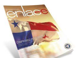 Revista enlace 230