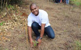 reforestacion-dia