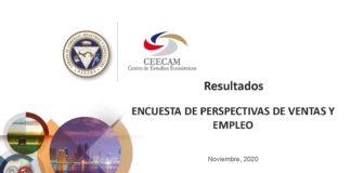 encuesta-perspectiva-nov2020